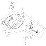Fuel System (Fuel Tank)