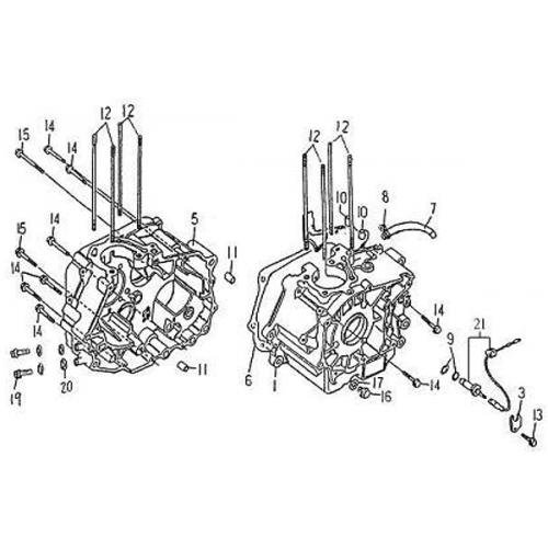 Crankcase (Barossa Silverhawk 250) on