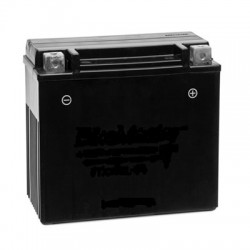 BATTERY ASS'Y (YTX4L-BS)